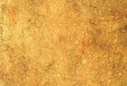 Zaida Sabatés — Pan de oro oxidado