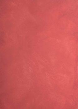 Zaida Sabatés — Pátina roja
